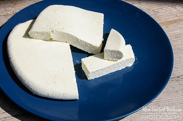 Tasty, versatile, paneer Indian cheese